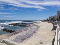 岸在开普敦,南非 库存图片