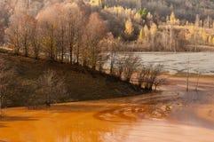 岸在被污染的湖落 免版税库存照片