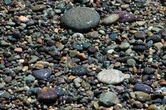 岸小卵石 库存图片