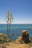 从岸的海景 免版税库存照片