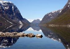 峡湾横向挪威 库存图片