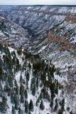 峡谷全部冬天 库存图片
