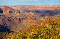 峡谷全部概览 免版税图库摄影