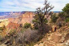 峡谷全部远景 库存照片