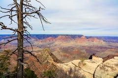 峡谷全部远景 免版税图库摄影