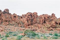 峡谷内华达红色岩石美国 免版税库存图片