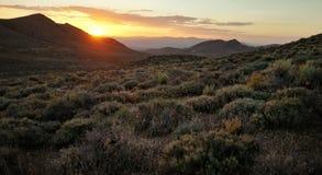 峡谷加利福尼亚 免版税图库摄影