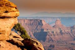 峡谷和岩层看法在西南犹他 库存照片