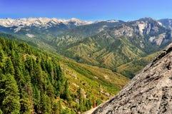 峡谷国王横向夏天 库存照片