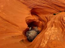 峡谷在沙漠,那瓦伙族人土地,亚利桑那 免版税图库摄影