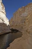 峡谷在沙漠 免版税库存图片