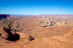 峡谷地国家公园沙漠风景 免版税库存图片