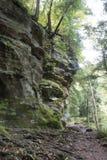 峡谷墙壁,Hocking小山状态森林 免版税库存图片