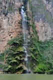 峡谷墨西哥sumidero瀑布 免版税库存照片