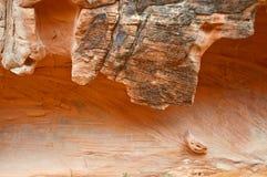 峡谷形成红色岩石墙壁 库存图片