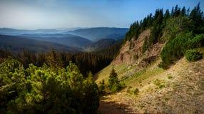 峡谷是一`地狱`在喀尔巴阡山脉 Gorgany乌克兰 图库摄影