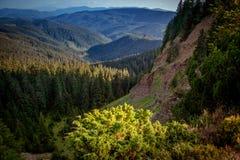 峡谷是一`地狱`在喀尔巴阡山脉 Gorgany乌克兰 免版税库存图片