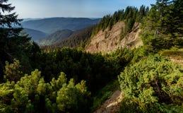 峡谷是一`地狱`在喀尔巴阡山脉 Gorgany乌克兰 库存照片