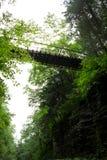 峡谷桥梁 免版税库存图片