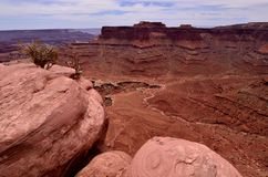 峡谷沙漠犹他 免版税库存照片