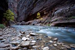 峡谷河流 免版税库存图片