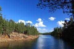 峡谷湖森林 免版税库存照片