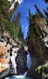 峡谷瀑布加拿大 库存照片