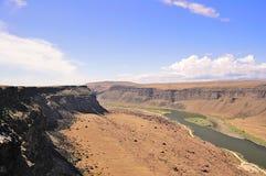峡谷爱达荷河蛇 免版税图库摄影