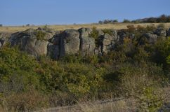 峡谷由绿叶和树围拢 免版税图库摄影