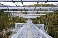 峡谷的全景有世界的最长的停止人行桥的 库存图片