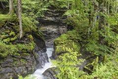 峡谷的快速的山河 库存照片