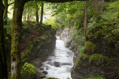 峡谷的快速的山河 免版税库存照片