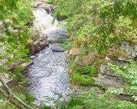 峡谷秋天,峡谷下跌路旁公园, MI 库存图片