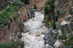 峡谷科尔卡,秘鲁 库存照片