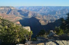 峡谷科罗拉多全部河 地质的形成 免版税库存图片