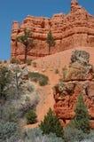 峡谷红色 库存照片