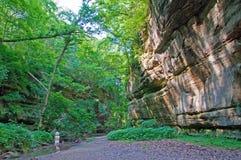 峡谷绿色砂岩时间 免版税库存图片