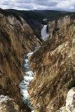 峡谷美国黄石 免版税库存照片
