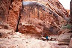 峡谷背包徒步旅行者 库存照片