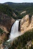峡谷落全部更低的黄石 库存照片