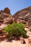 峡谷颜色埃及 库存图片