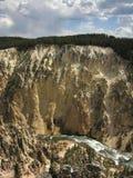 峡谷黄色 图库摄影