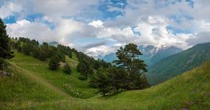 峡谷,全景高加索山脉 免版税库存照片