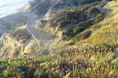 峡谷,国家公园,加利福尼亚,美国 免版税库存图片