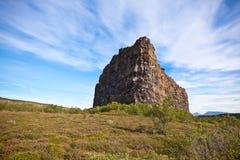 峡谷Asbyrgi,冰岛 库存图片