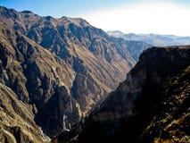 峡谷colca秘鲁 免版税库存图片
