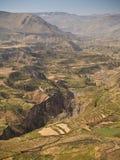 峡谷colca秘鲁 库存图片