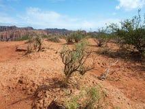 峡谷desertic横向las quijadas 免版税库存照片
