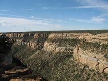 峡谷mesa verde 库存图片