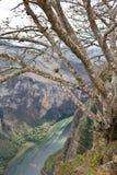 峡谷Sumidero,恰帕斯州,墨西哥 图库摄影